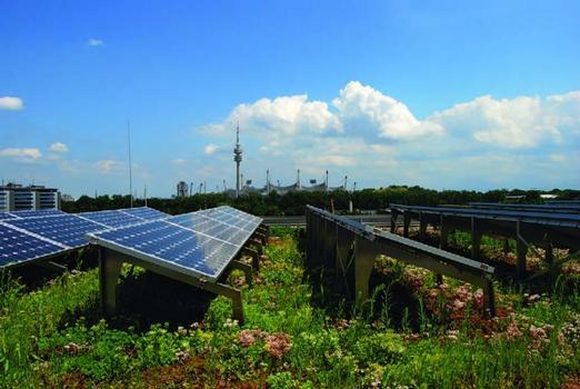 Das Dach trägt ökologischen wie ökonomischen Ansprüchen Rechnung, denn die Kombination von Dachbegrünung und Photovoltaik erzielt Synergieeffekte