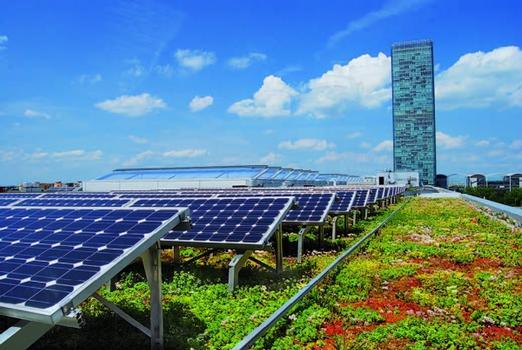 Die Dachbegrünung erhöht die Leistungsfähigkeit der Photovoltaikanlage, da sie für eine vergleichsweise niedrige Umgebungstemperatur sorgt