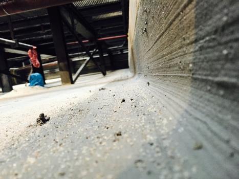 3.Schritt zum Erfolg:  Boden und Wand sind jetzt vorbildlich geschützt, eine durchgehende Kehle hält aggressive Medien vom Eindringen in Randfugen zwischen Bauteilstößen fern. Wo vormals Risse und Ausbrüche klafften, sorgt die Anwendung der Sinnotec Silikat-Technologie für dauerhaft geschlossene Oberflächen. Sichtkontrollen sollten zur Sicherheit dennoch turnusmäßig erfolgen