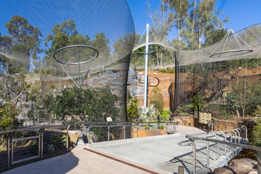 A transparent stainless steel mesh construction spans the enclosures of the new Africa Rocks development in San Diego Zoo.