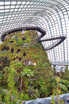 The Cloud Forest in the Gardens by the Bay