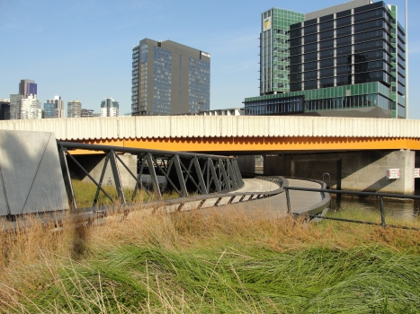 Charles Grimes Bridge