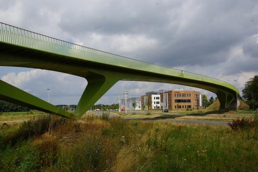 Graaf Alardsingel Footbridge