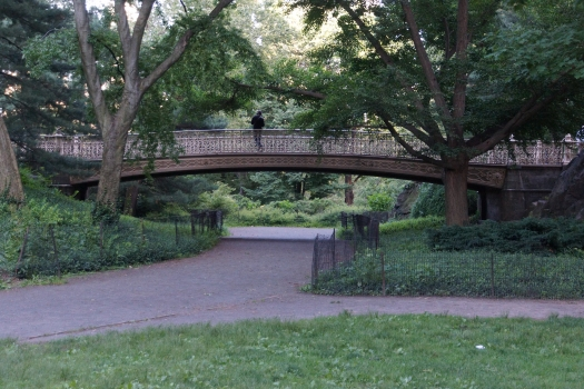 Pinebank Arch Bridge