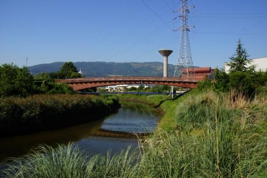 Passerelle sur le Rio Galindo