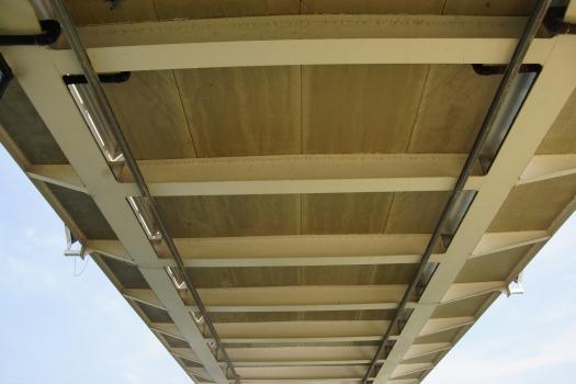 Genebos Bridge