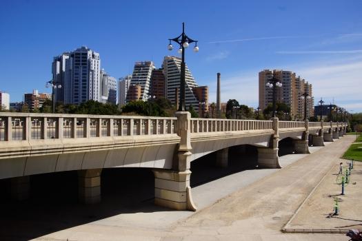 Pont del Regne de València