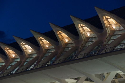 Museu de les Ciències «Príncipe Felipe»