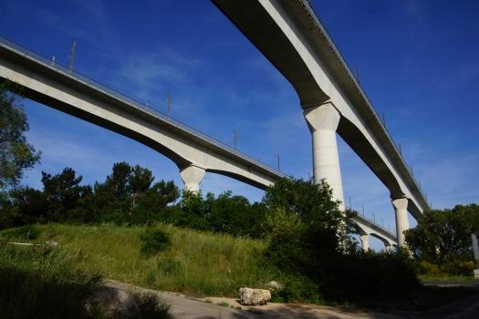 Avignon Viaducts