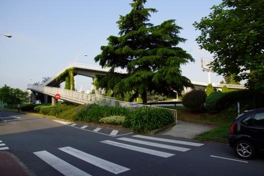 Fußgängerbrücke über die Avenida Alcalde Alfonso Molina II