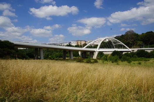 Miñobrücke Lugo