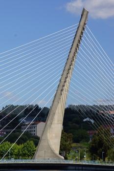 Lerez River Bridge