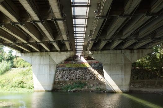 Pont du Lez (A709, ex A9)