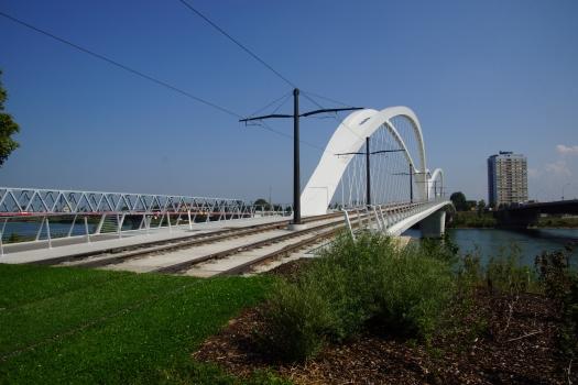 Pont Beatus-Rhenanus