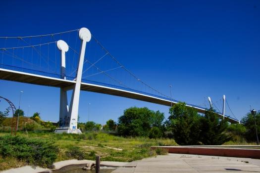 Parque de la Cuña Footbridge (R-3)
