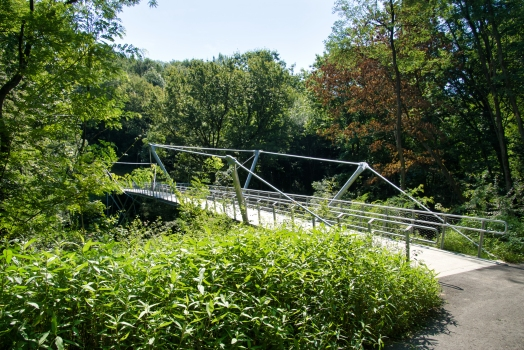 Geh- und Radwegbrücke im Miramón-Wald