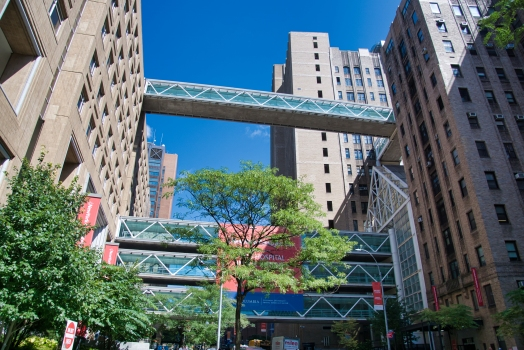 Fort Washington Avenue Skybridges