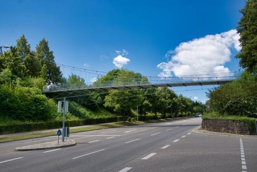 Kochenhof Footbridge