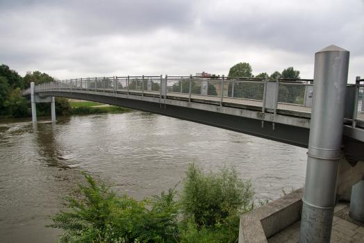 Danube Footbridge
