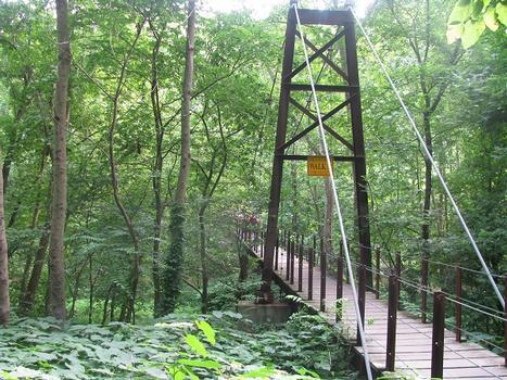 Patapsco State Park Suspension Bridge