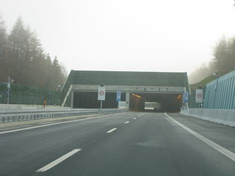 Der Landschaftstunnel Harte A17 in Fahrtrichtung Prag