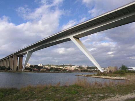 Martiques Viaduct.