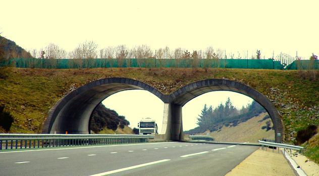 Autoroute A89 - Wildbrücke