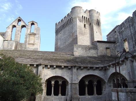 Abbaye de Montmajour - Cloître et tour de Pons de l'Orme