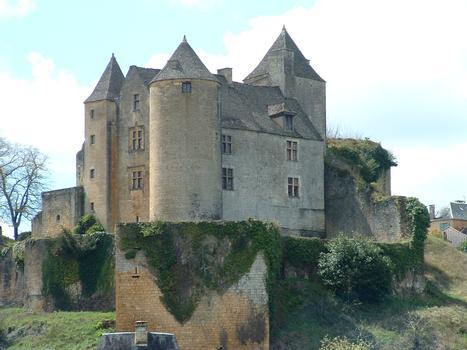 Salignac-Eyvigues - Château de Salignac - Corps de logis vu du nord