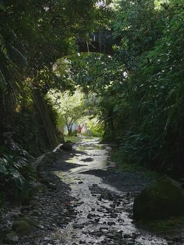 Chemin de fer de La Réunion - Saint-Benoît à la Marine - Pont de la Marine - La tranchée ouverte qui suit le pont. On voit le pont routier qui permet de franchir la voie ferrée et d'accéder au site de la Marine