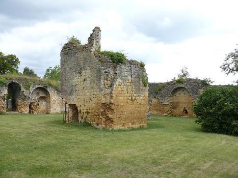 Château de Molières