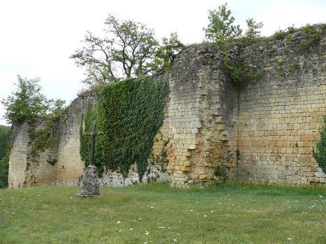 Château de Molières - Mur exérieur