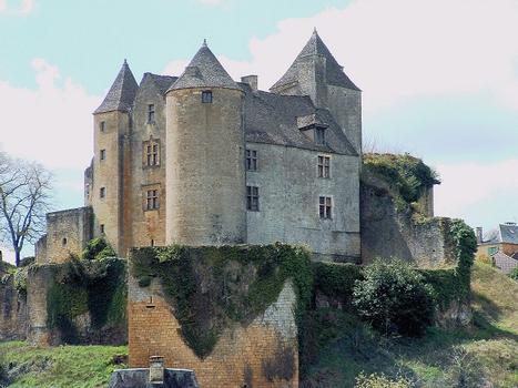 Salignac-Eyvigues - Château de Salignac