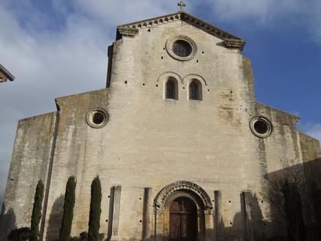 Saint-Paul-Trois-Châteaux - Ancienne cathédrale Notre-Dame-et-Saint-Paul - Façade occidentale
