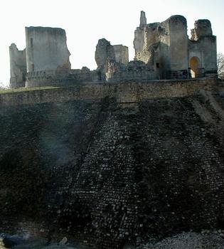 Fère-en-TardenoisRuines du château