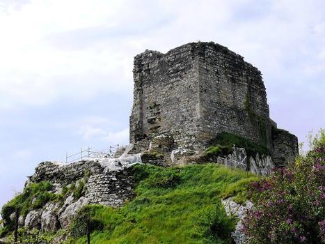 Château de La Roche-Maurice