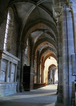 Cathédrale Saint-Mammès de Langres - Collatéral nord