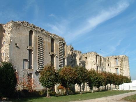 Château de La Ferté-MilonArrière de la façade avec les pierr