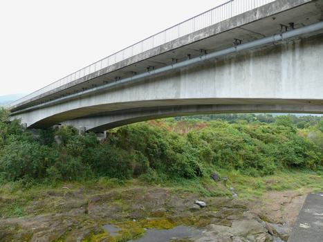 RN2 - Saint-André et Bras-Panon - Pont de la rivière du Mât - La travée au-dessus de la rivière du Mât