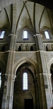 Cathédrale Saint-Mammès de Langres.Nef - Elévation