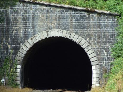Ligne de chemin de fer Paray-le-Monial - Lozanne - Boucle de Claveisolles - Sortie du tunnel de Claveisolles à Saint-Nizier-d'Azergues