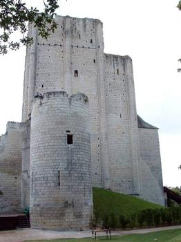 Château Sud, LochesDonjon du 11ème siècle et tour orientale du 13ème siècle : Château Sud, Loches Donjon du 11 ème siècle et tour orientale du 13 ème siècle