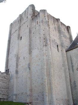 Château Sud, LochesDonjon et petit donjon du 11ème siècle
