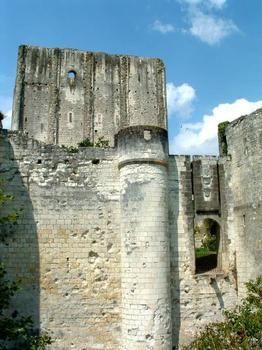 Château Sud, LochesEntrée et donjon du XIème siècle