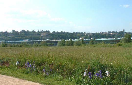 Boulevard périphérique nord de Lyon - Viaduc sur le Rhône - Vu du parc de la Feyssine à 18 heures
