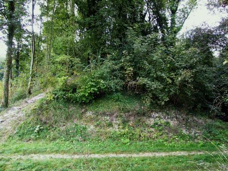 La Cheppe - Camp d'Attila (oppidum des Catalauni) - Coupe de la levée de terre de plusieurs mètres de hauteur
