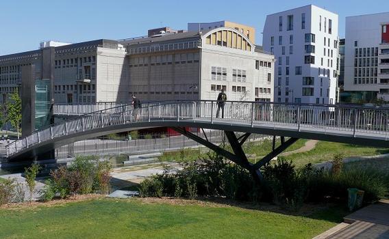 Paris 13ème arrondissement - Passerelle des Grands Moulins au-dessus du jardin