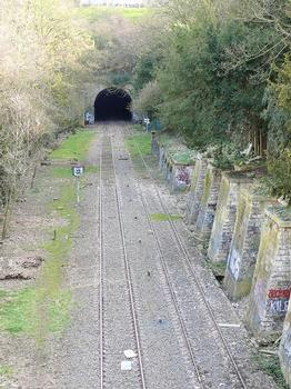 Petite Ceinture de Paris – Belleville-Tunnel – Tranchée des Buttes-Chaumont