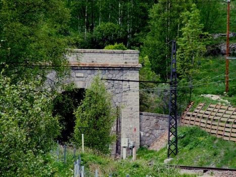 Tunnel ferroviaire de Puymorens - Entrée sud