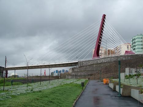 Puente Interconexion Escaleritas-La Feria